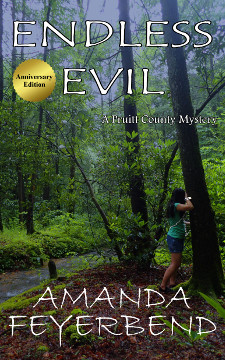 Endless Evil by Amanda Feyerbend